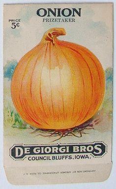 "De Giorgi Bros. Council Bluff IA   Onion ""Prizetaker"" Seed packet"
