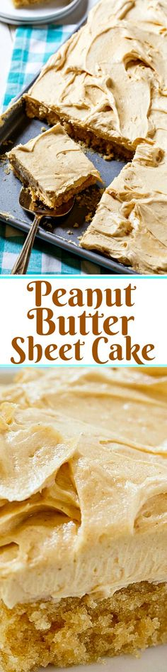 Peanut Butter Sheet Cake with a thick and fluffy peanut butter frosting. Mini Desserts, Just Desserts, Delicious Desserts, Peanut Butter Sheet Cake, Peanut Butter Desserts, Peanut Cake, Cookie Butter, Oreo Dessert, Yummy Treats