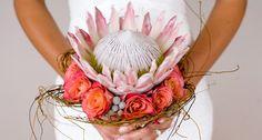 Bouquet with protea (sugar bush flowers) Flor Protea, Protea Bouquet, Protea Flower, Boquet, Protea Wedding, Bush Wedding, Flower Bouquet Wedding, Floral Wedding, Wedding Bouquets