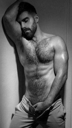 Erotic hairy male pics