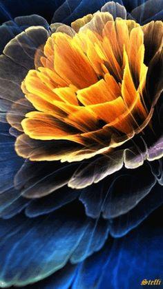 Decent Image Scraps: Animated Flower