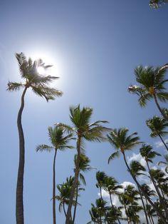 Punta Cana, Dominican Republic. I knew it too! I love my ISLAND!