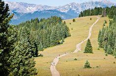 TransRockies Run... Colorado racing bucketlist.