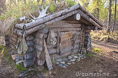 Exterior of wooden hunting cabin or lodge in forest.