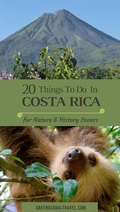 Top 20 Things to Do in Costa Rica for Nature & History Lovers. Includes Costa Rica travel tips, the best Costa Rica resorts, & Costa Rica activities to explore on your next Costa Rica Vacation.