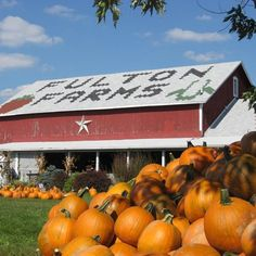 Travel   Ohio   Pumpkin Patches   Fall   Attractions   Bucket List