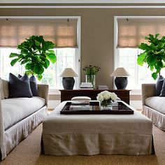Trevor Tondro - living rooms - sisal rug, linen ottoman, slipcovered linen ottoman, linen sofa, slipcovered linen sofa, black tray, stacked books, vase of flowers, vase of white roses, wooden chest, dark blue pillow, pair of sofas, face to face sofas, sofas facing each other, matching sofas, linen roman shade, linen window shade, olive jar table lamp, rustic urn table lamp, mocha wall color, mocha colored walls, houseplant, fiddle leaf fig, fiddle leaf fig plant, symmetrical living room…