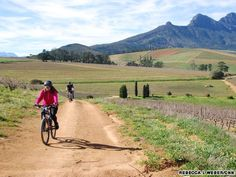 Cycling South Africa's wine routes | CNN Travel Wine Tourism, Travel And Tourism, Provinces Of South Africa, Cycling Holiday, Travel Info, Holiday Destinations, Beautiful Places, Places To Visit, Country Roads