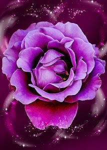 For Momma by Bill Tiepelman - A dedicated to my mom, and inspired by breast cancer awareness Pink and her favorite color Purple. A Fine Art floral vision centered around a prominent pink rose atop a layer of purple and hope. Click on the image to enlarge.