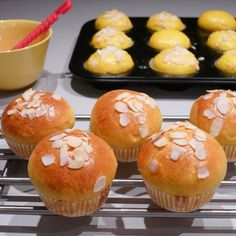Mary Dane Muffin, Mary, Breakfast, Food, Pebble Stone, Morning Coffee, Muffins, Cupcake, Meals