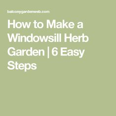 How to Make a Windowsill Herb Garden | 6 Easy Steps