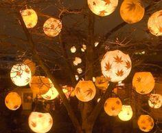 Get ready for breathtaking Fall Outdoor Wedding Ideas