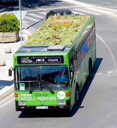 Jardins itinerantes - áreas verdes nos tetos dos ônibus na Espanha