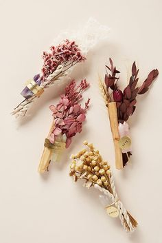 Palo Santo and Crystal Bundle by Anthropologie in Green, Decor Palo Santo Wood, Holiday Gifts, Christmas Gifts, Smudge Sticks, Diy Birthday, Birthday Ideas, Dried Flowers, Faux Flowers, Creative Gifts