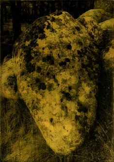 Anaïs Boudot, série La noche oscura