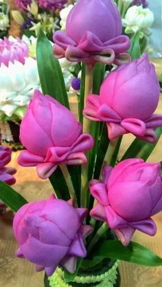 19 Exotic Types of Tropical Flowers for Home Decorations (Various Colors) Strange Flowers, Unusual Flowers, Wonderful Flowers, Beautiful Flowers Garden, Unusual Plants, Rare Flowers, Exotic Plants, Pretty Flowers, Flowers Nature