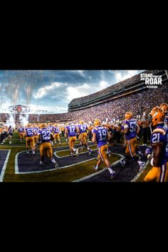 Purple and gold! Lsu Tigers Football, State College, Basketball Court, Sports, Purple, Gold, Hs Sports, Sport, Viola