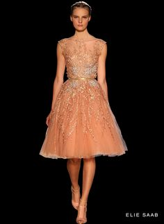 #18 of the ELIE SAAB - Haute Couture - Fall Winter 2012-2013 Collection