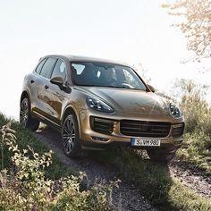 The new Porsche Cayenne! That's my love