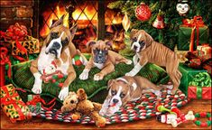 Boxer - Fireside Christmas - by Margaret Sweeney