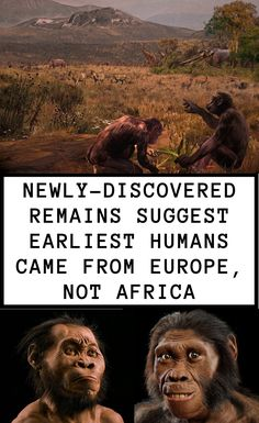 A new discovery may have changed how scientists see our evolutionary family tree — suggesting that the human branch and ape branch split much longer ago than previously thought. Human Teeth, Early Humans, Human Evolution, Singles Events, Love Only, Interesting News, History Museum, National Museum, Wtf Funny
