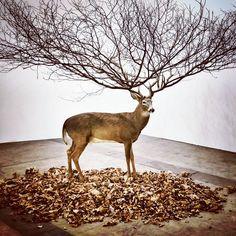 Favorite piece... MyeonBeom Kim #ArtBasel #HongKong #Padgram