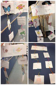 Invertebrates and Vertebrates Mobile. #scienceteacher ideas inspired by Pinterest! #mschihscience