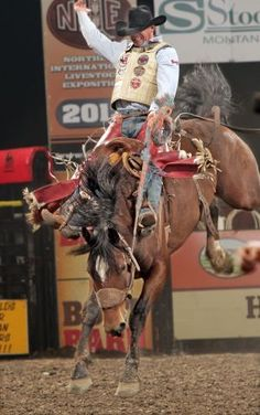 Wyoming cowboy Chet Johnson finds new life in old saddle
