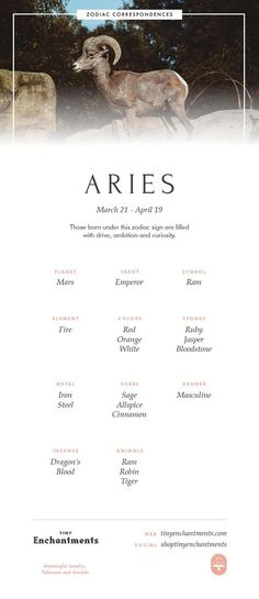 Aries Zodiac Sign Correspondences - Aries Personality, Aries Symbol, Aries Mythology and Aries Meaning Full Infographic: zodiac, astrology, horoscopes Aries Art, Aries Zodiac Facts, Aries Astrology, Aries Horoscope, Zodiac Art, Aries Zodiac Tattoos, Virgo And Aries, Aries Sign, Aries Zodiac Meaning