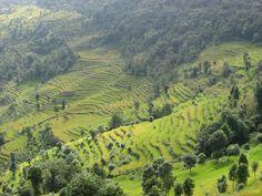 Nepal, prachtig land.
