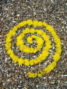 Dandelion spiral by Dishtwiner on DeviantArt Nature Activities, Outdoor Activities, Outdoor Learning, Outdoor Education, Land Art, Ephemeral Art, Spiral Art, In Natura, Environmental Art