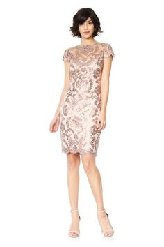 Paillette Embroidered Lace Cap Sleeve Dress