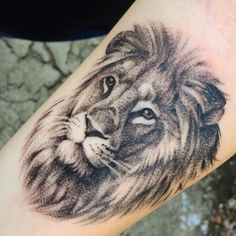 "151 Likes, 4 Comments - Alison Reber (@alisonrebertattoo) on Instagram: ""Fun lion on forearm for a first tattoo today! #tattoo #tattoos #armtattoo #forearmtattoo #lion…"""