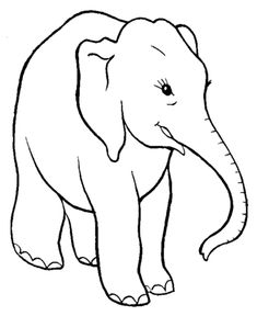 Smart Elephant Coloring Pages | Elephant Coloring Page and Kids