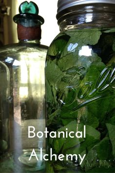 Botanical Alchemy: A professional course on making botanical extracts for skin care products.