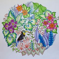 883 Best Magical Jungle Images In 2019 Coloring Books Johanna