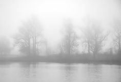 Large leafless trees emerge from a late afternoon fog bank along the shoreline of City Park lake, Madisonville, Kentucky. Vague reflections of the trees show on the slightly rippled surface of the water.   A painterly effect has been applied to this black and white image.