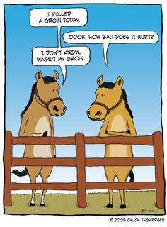 This happened with Maggie Moo.  I ended up at a jumper show a week later wrapped up like a football player too stupid to respect his body.