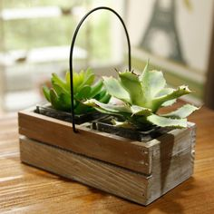 home decor - http://zzkko.com/n135129-ak-Manor-Japanese-style-garden-to-do-the-old-wooden-handle-wire-baskets-succulents-planted-pots-gardening-groceries.html