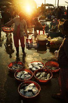 Hoi An Fish Market, Vietnam