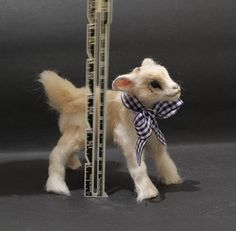 OOAK Realistic Miniature Cute Baby Goat by Malga by malga1605