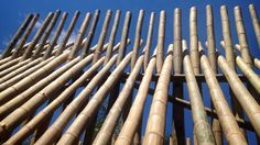 Drying bamboo poles requires more time than wood of similar density. This because bamboo possess hygroscopic materials (compound that easily absorbs moisture) that may contain moisture content, depending on the felling season, area of growth and species.