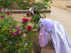 Stop to Smell the Roses in San Diego's Balboa Park