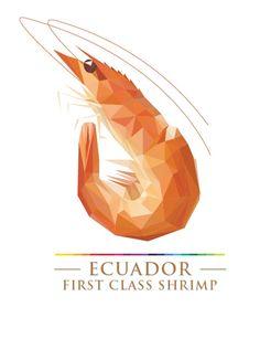 ecuador_shrimp_logo.jpg (487×634)