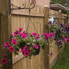 Hang dollar store solar lights on basket hooks. | 41 Cheap And Easy Backyard DIYs You Must Do This Summer