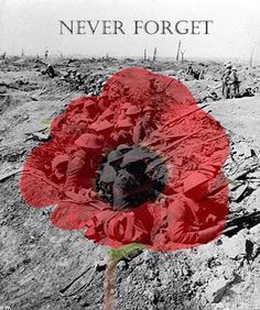never forget flanders fields remembrance day/armistice day Lest We Forget, Never Forget, World War One, First World, Schlacht An Der Somme, Remembrance Day Poppy, Remembrance Day Pictures, Remembrance Day Quotes, Battle Of The Somme