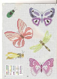 farfalle colorate (1)