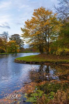 Dave_Z_Photography - Harold Park. For more Yorkshire content visit http://imfromyorkshire.com/