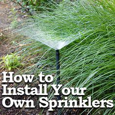 How to Install Your Own In Ground Sprinklers - Frugal Menthod by Pretty Handy Girl