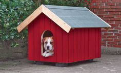 Best plans for DIY dog house http://ow.ly/JULht   #doghouse  DIY dog house - Handyman tips